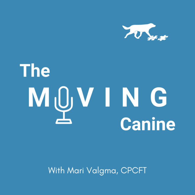 #24 What it REALLY means to work on your dog's body awareness and coordination skills?